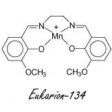 Synthetic superantioxidant Eukarion-134 stops muscle breakdown